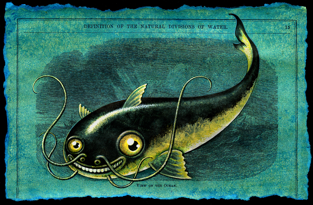 Namazu leah palmer preiss curious art acrylic on for Japanese word for fish
